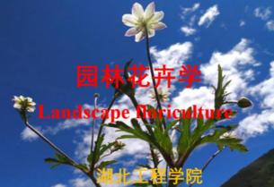 园林花卉学